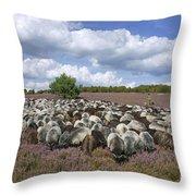 131114p166 Throw Pillow
