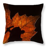 131114p315 Throw Pillow