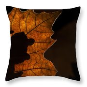 131114p318 Throw Pillow