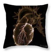 Coronary Blood Supply Throw Pillow