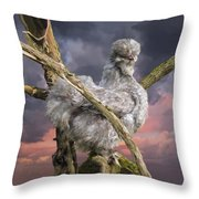 14. Cuckoo Bush Throw Pillow