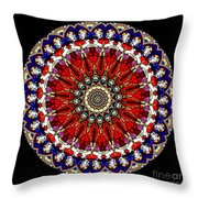 Kaleidoscope Stained Glass Window Series Throw Pillow