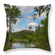 Lowcountry Marsh Throw Pillow