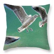 10760 Seagulls In Flight #001 Photo Painting Throw Pillow