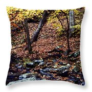 South Branch Quantico Creek Throw Pillow
