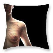 The Cardiovascular System Female Throw Pillow