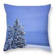 140303a-12 Winter Blues Throw Pillow