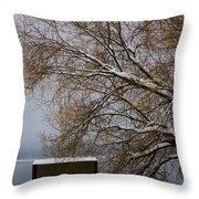 140303a-13 Winter Color Throw Pillow