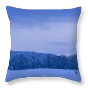140303a-43 The Bull River Valley In Winter Throw Pillow