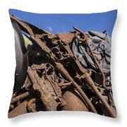 140314p129 Throw Pillow