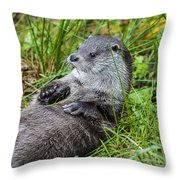 140314p373 Throw Pillow