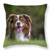 140420p081 Throw Pillow
