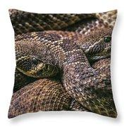 140420p282 Throw Pillow