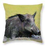 140530p337 Throw Pillow