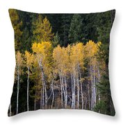 Guardians Of Trestle Creek  -  141102a-138 Throw Pillow