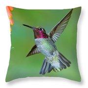 Annas Hummingbird Throw Pillow