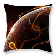 Fertilization Throw Pillow