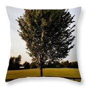 Orange County Park Throw Pillow