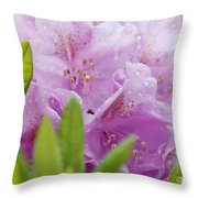 Spring 2013 Throw Pillow
