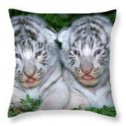 Tigre Blanc Panthera Tigris Throw Pillow