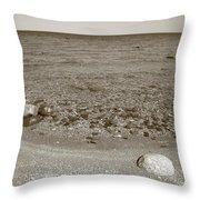 Lake Huron Throw Pillow