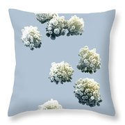 Lymphocytes Undergoing Apoptosis Throw Pillow