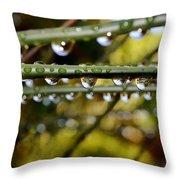 Raindrops On Bamboo Grass Throw Pillow