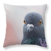 Rock Dove Throw Pillow