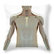 The Muscle System Throw Pillow