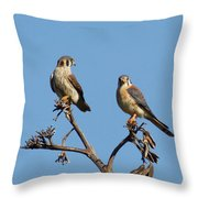Birds Of The World Throw Pillow