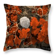 Blood Clot Throw Pillow