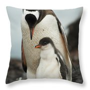 Gentoo Penguin With Young Throw Pillow
