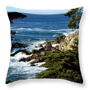 17 Mile Drive Iv Throw Pillow