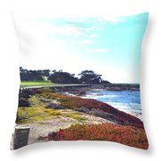 17 Mile Drive Shore Line II Throw Pillow by Barbara Snyder