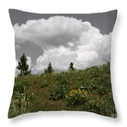 Cloudy With Green Throw Pillow