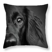 Portrait Of A Mixed Dog Throw Pillow