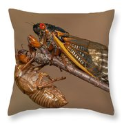 17-year Periodical Cicada II Throw Pillow