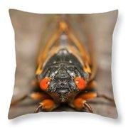 17-year Periodical Cicada IIi Throw Pillow