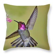 Annas Hummingbird Throw Pillow
