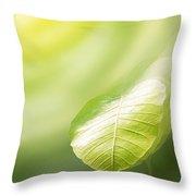 Pho Or Bodhi Throw Pillow