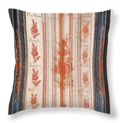 18th Century Thermometer-barometer Throw Pillow