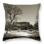 18th Century Winter Throw Pillow