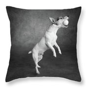 Portrait Of A Jack Russell Terrier Dog Throw Pillow