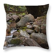 1917 Carriage Road Bridge Of Acadia Throw Pillow