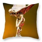 1928 Rolls-royce Phantom I Sedenca De Ville Hood Ornament Throw Pillow