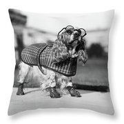 1930s Cocker Spaniel Wearing Glasses Throw Pillow