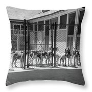 1930s Kennel Yard Full Of Foxhound Dogs Throw Pillow