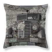 Desert Traveler Throw Pillow