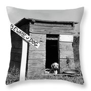 1950s Cocker Spaniel Puppy In Doghouse Throw Pillow