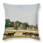 1990s Small Group Of Horses Throw Pillow